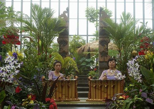 バリ祭の写真です_e0017689_13422011.jpg