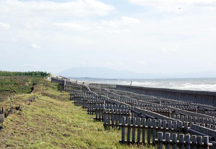十三湖 と 日本海をチラッと♪_a0136293_15515514.jpg