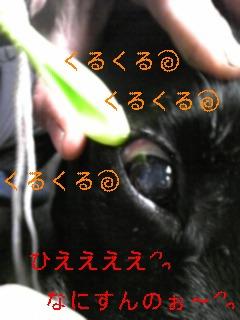 また感動!!_f0148927_10552026.jpg