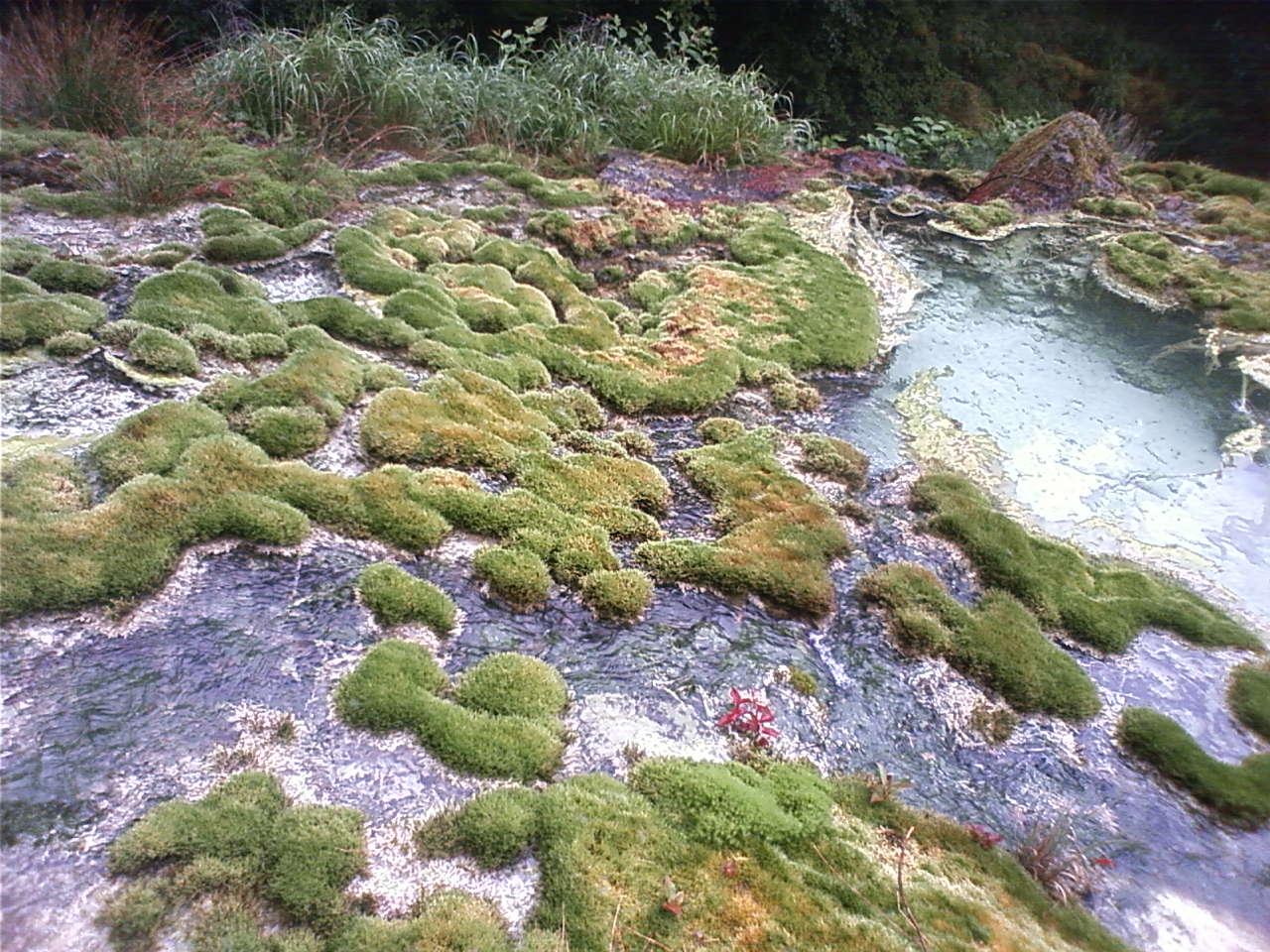 唐沢鉱泉の源泉 The source of the Karasawa spring_e0155231_8305892.jpg