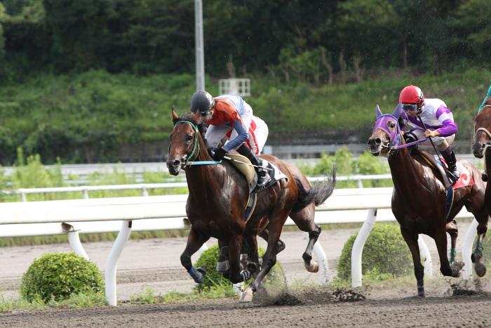 2009年8月10日(月) 高知競馬 2R D8 記者選抜 レース_a0077663_19122062.jpg