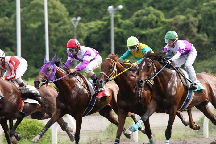 2009年8月10日(月) 高知競馬 2R D8 記者選抜 レース_a0077663_19122943.jpg