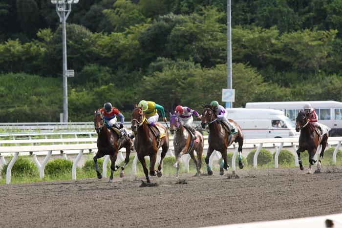 2009年8月10日(月) 高知競馬 2R D8 記者選抜 レース_a0077663_19124778.jpg