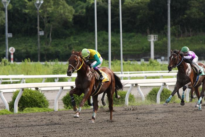 2009年8月10日(月) 高知競馬 2R D8 記者選抜 レース_a0077663_19125627.jpg