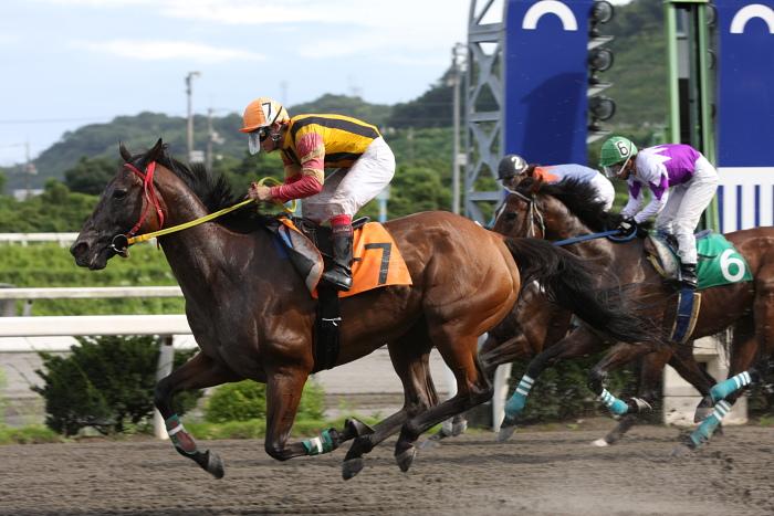 2009年8月10日(月) 高知競馬 2R D8 記者選抜 レース_a0077663_19131456.jpg