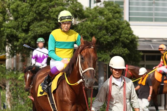 2009年8月10日(月) 高知競馬 2R D8 記者選抜 パドック_a0077663_791350.jpg