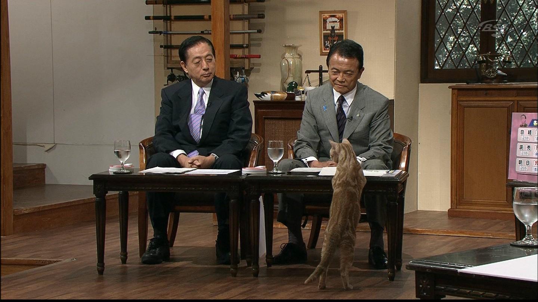 【生放送】自民党・麻生太郎総裁記者会見_e0165379_1251769.jpg