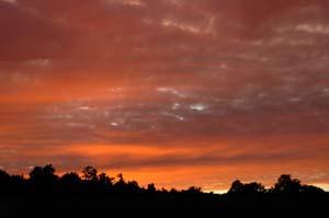 秋は夕日が綺麗♪_f0096216_14572449.jpg