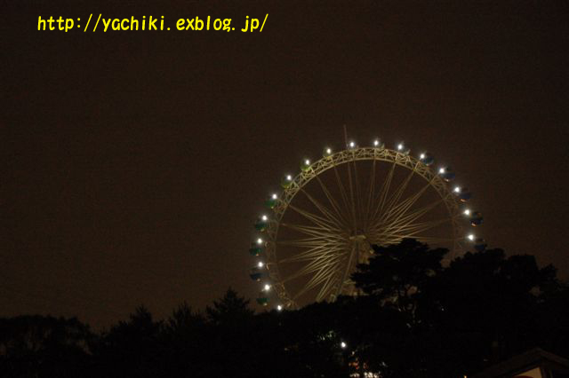 b0153451_121279.jpg