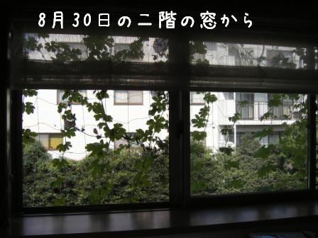 f0068501_0454676.jpg