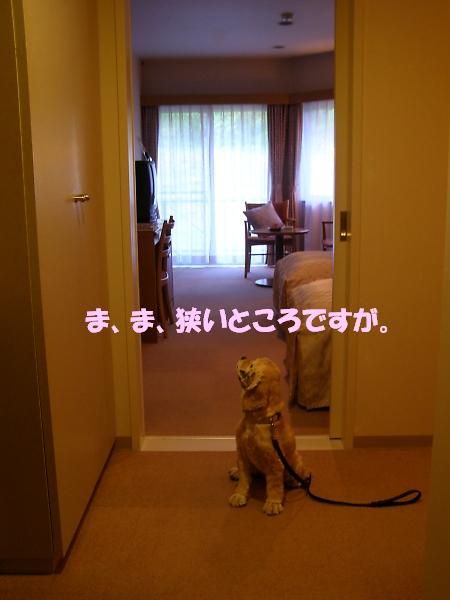 b0067012_0225087.jpg