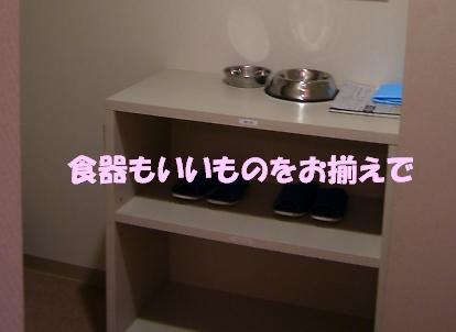 b0067012_027376.jpg