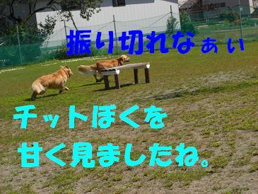 f0170713_15224631.jpg