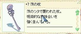 e0178432_1535626.jpg