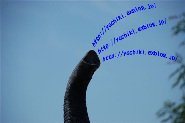 b0153451_043549.jpg