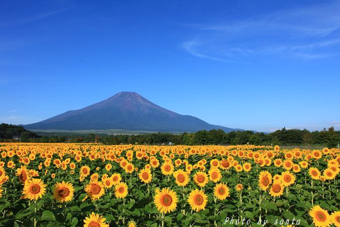 さんたの富士山と癒しの射心館