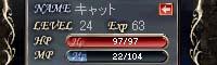 b0048563_16242348.jpg