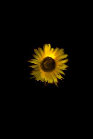 f0206068_18505281.jpg