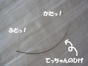 f0143123_2034296.jpg