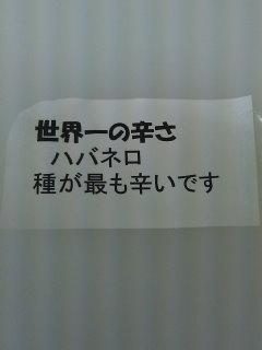 b0189926_18381078.jpg