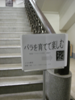 a0094959_1374587.jpg