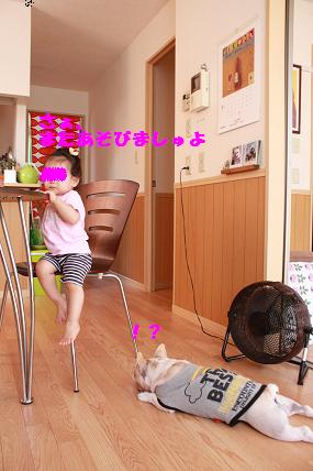 c0174077_902938.jpg