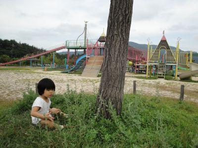 マコちゃん、大きい公園に行く!_e0166301_5494147.jpg