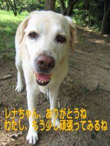 b0008217_10442980.jpg