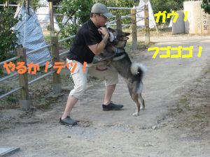f0143123_10193259.jpg