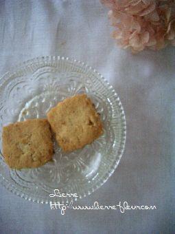 白灯さんと美味しいクッキー_e0127625_1048696.jpg