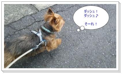 c0033145_2145321.jpg
