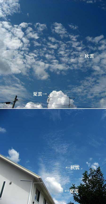 秋空が・・                          No.703_d0103457_116314.jpg