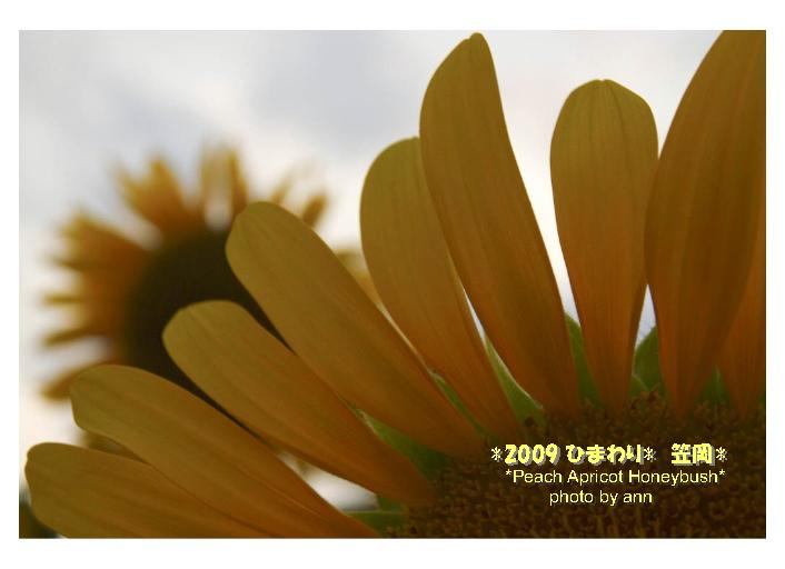 f0202957_13154454.jpg