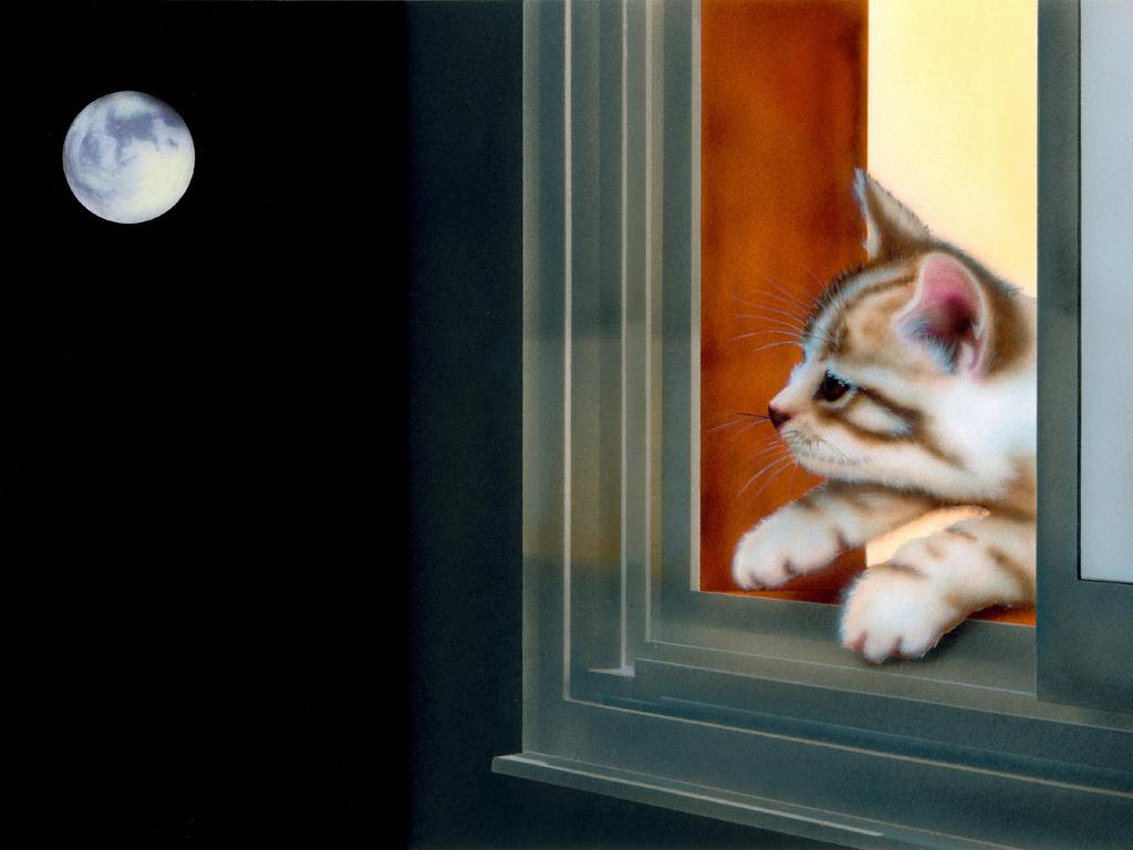かわいい子猫の壁紙 Junya Blog 猫 犬 リアリズム絵画