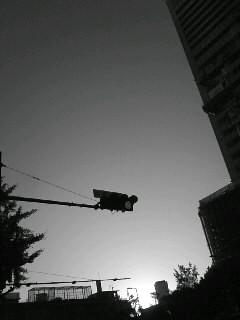 f0100480_1994173.jpg