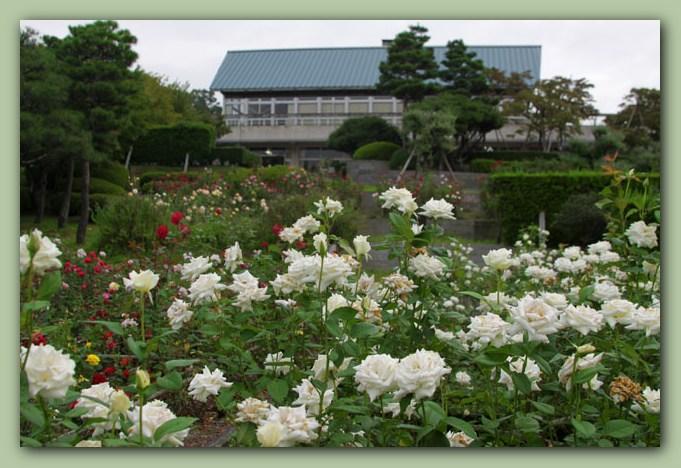 奥卯辰山公園_f0079990_8434119.jpg