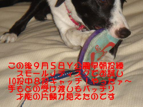 b0101991_15421321.jpg