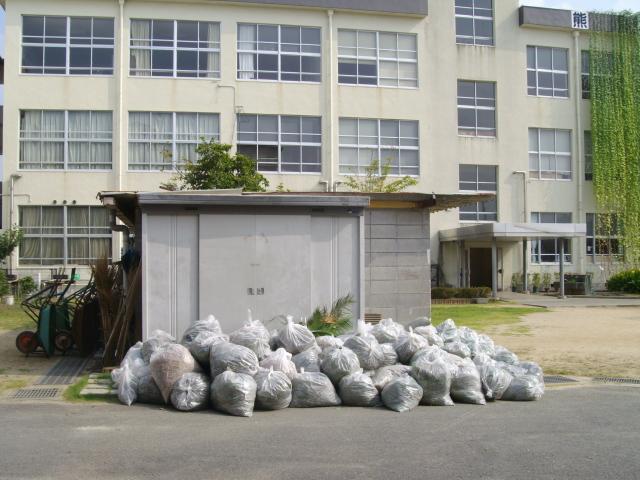 熊本市の江原(こうげん)中学校の素晴らしいエコカーテンです!_d0139806_21263692.jpg