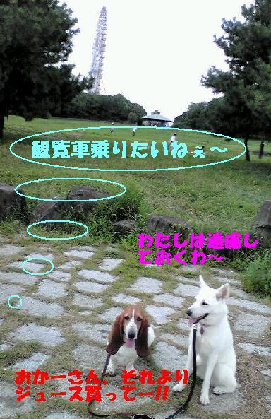 f0121712_16251467.jpg