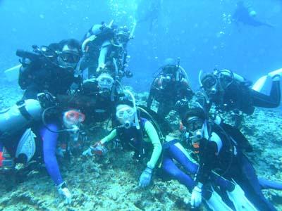 9月6日荒れててもきれいな海♪記念ダイブでおめでとう!!!_c0070933_21161853.jpg