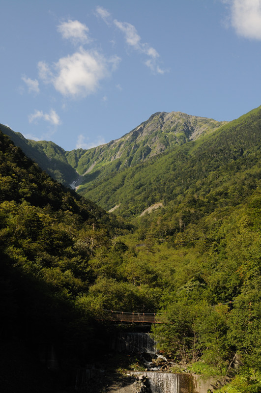 北岳にてホシガラス、イワヒバリ_d0099854_22422415.jpg
