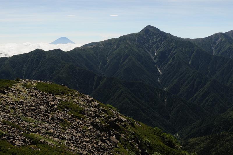 北岳にてホシガラス、イワヒバリ_d0099854_23142367.jpg