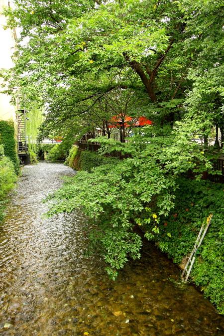 名残り惜しい 夏の京都_e0155066_10243332.jpg
