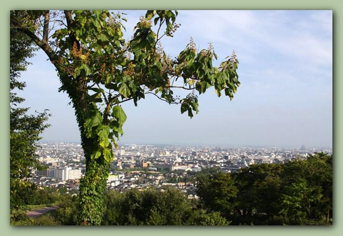 大乗寺山丘陵公園~三小牛_f0079990_974370.jpg
