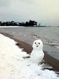 雪。_c0203404_17352054.jpg