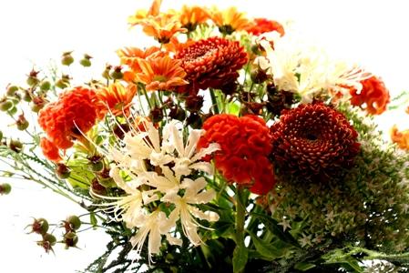 9月6日 日曜教室_b0048834_7343440.jpg