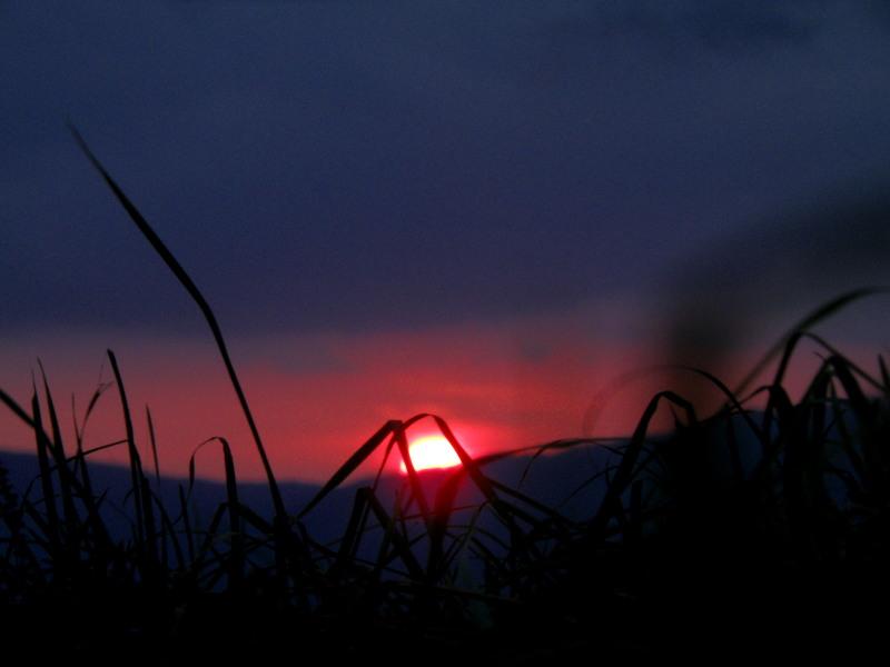 夜のガイドのひとコマ(荒川編)_f0075075_7501713.jpg