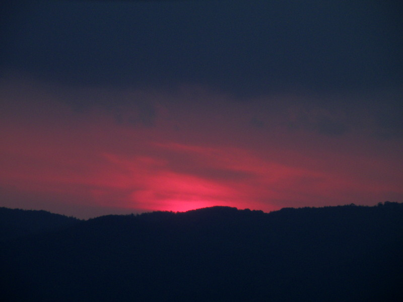 夜のガイドのひとコマ(荒川編)_f0075075_750535.jpg