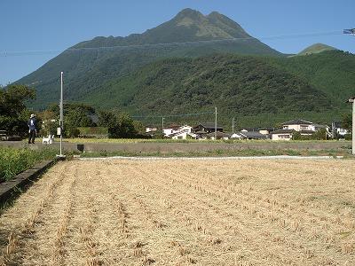 秋の景色_c0140982_16482615.jpg