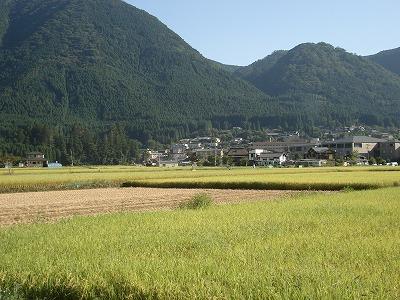 秋の景色_c0140982_16483615.jpg